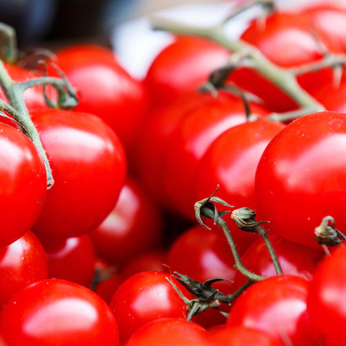 tomato-cherry-on-vine-online-grocery-delivery-singapore-thenewgrocer