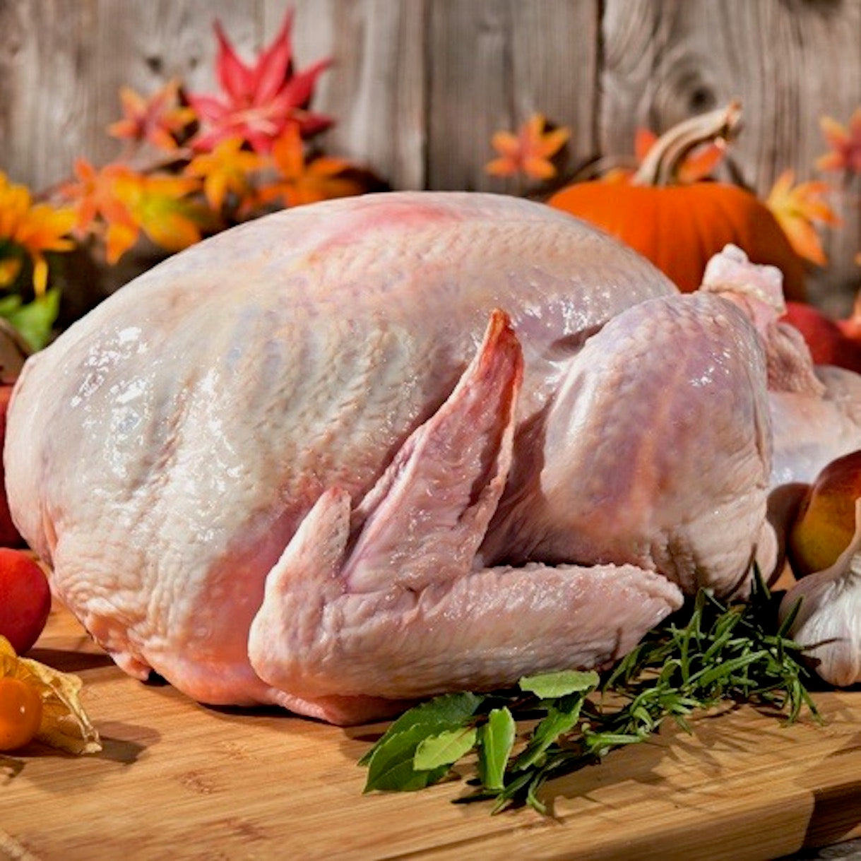Turkey | USA | +/- 5kg