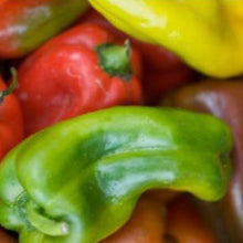 Load image into Gallery viewer, the-ugly-pepper-palermo-online-grocery-supermarket-delivery-singapore-thenewgrocer