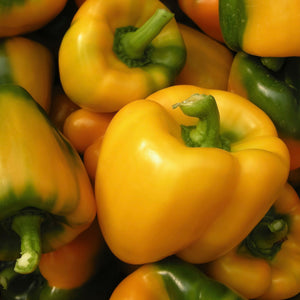 yellow-capsicum-online-grocery-supermarket-delivery-singapore-thenewgrocer
