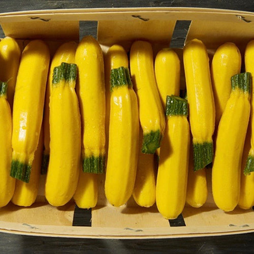 yellow-zucchini-online-grocery-delivery-singapore-thenewgrocer-supermarket