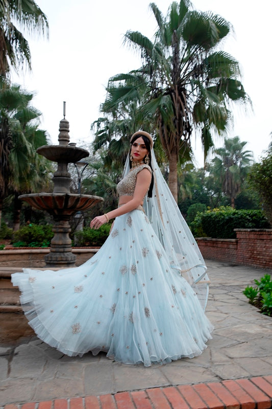 Ice Blue Star Pearl Embroidered Organza Lehenga