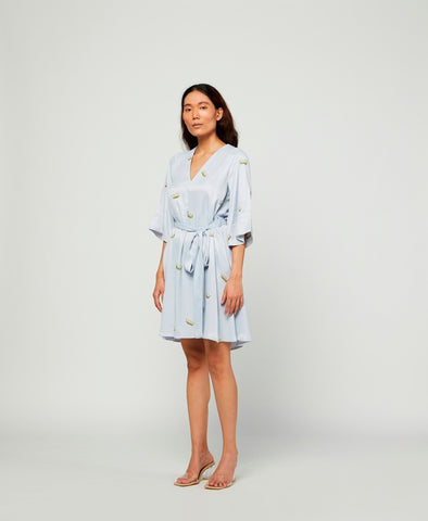 Mist Embroidered Silk Dress