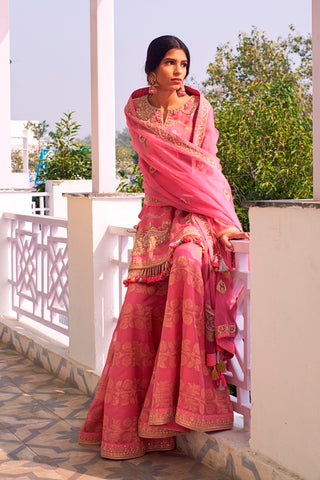 Pink Handloom Chanderi Hand Embroidered Kurta With Embroidered Sharara & Organza Dupatta