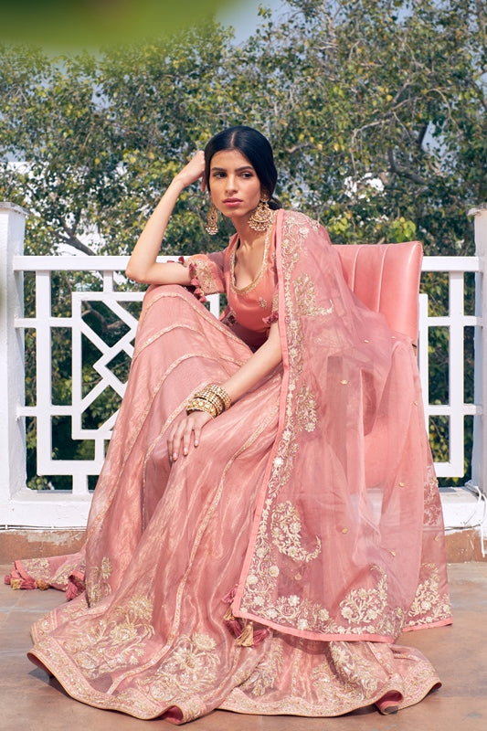 Old Rose Woven Dhari Embroidered Handloom Chanderi Lehenga With Embroidered Blouse & Organza Dupatta