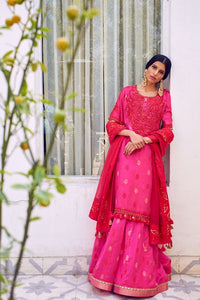 Fuchsia Red Woven Chanderi With Dori Hand Embroidered Kurta With Chanderi Skirt & Embroidered Organza Dupatta