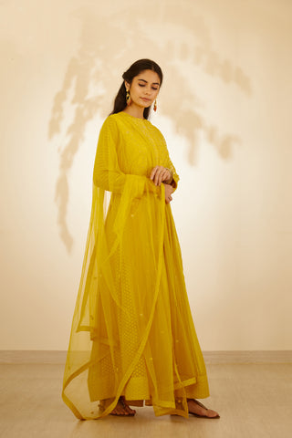 Mustard Yellow Dori Embroidered Long Kurta with Dupatta and Trouser