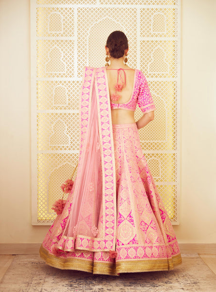 Pink Embroidered Gold Applique Lehenga Set