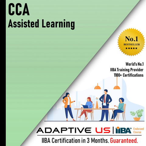 IIBA CCA Assisted Learning
