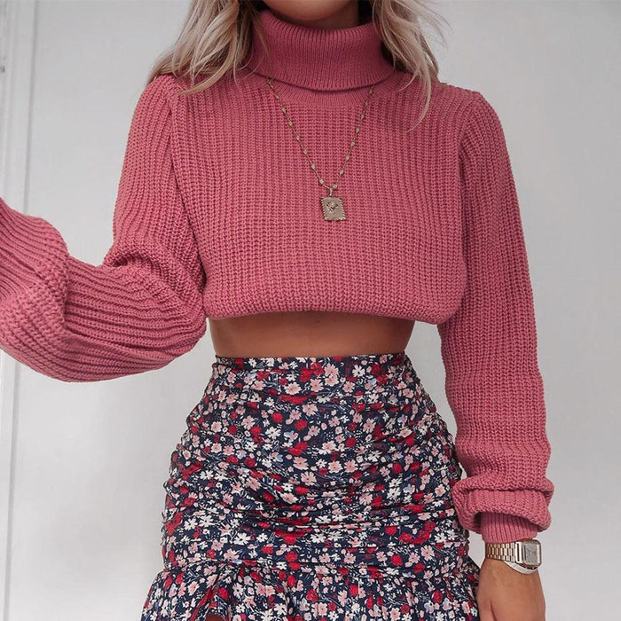 Fashion solid color turtleneck sweater