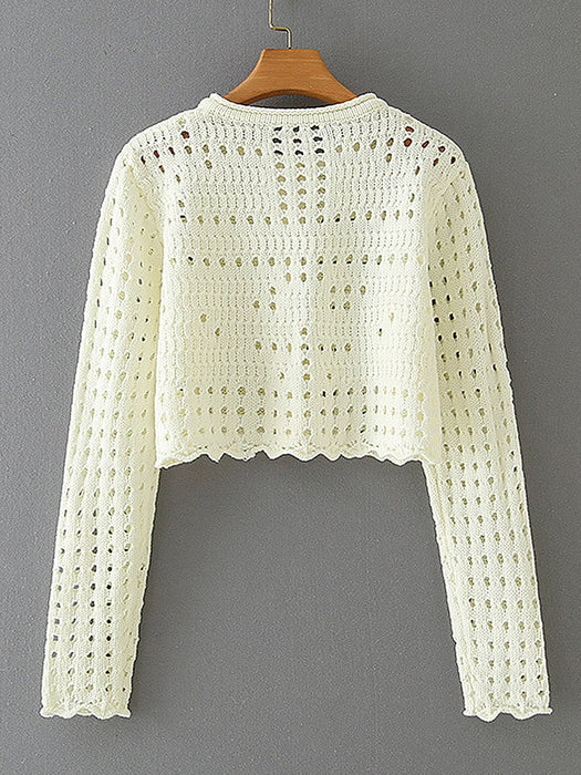 Hollow Out Mesh Long Sleeve Crop Cardigan