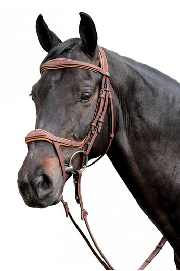 Double drop Bridle by Renaissance