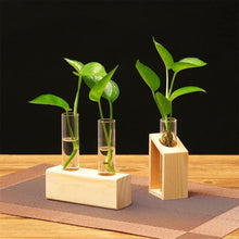 Load image into Gallery viewer, 2019 Creative Hydroponic Plant Transparent Vase Wooden Frame Coffee Shop Room Decor - LikeRE Marketplace