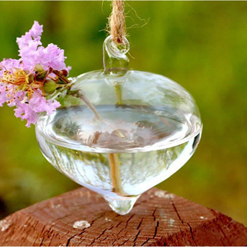 25# Terrarium Ball E Shape Clear Hanging Glass Vase Flower Plants Terrarium Container Micro Landscape Diy Wedding Home Decor - LikeRE Marketplace