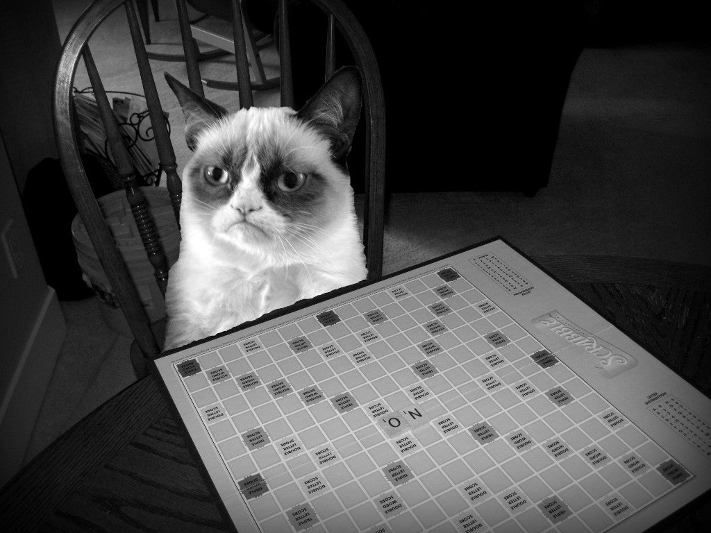 Board Games for Cat Lovers