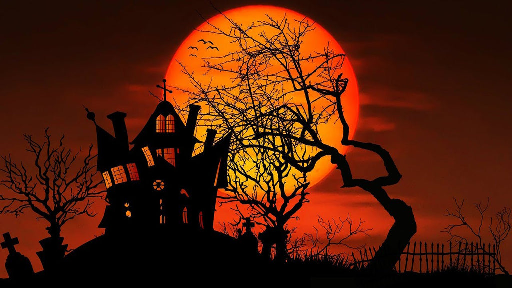 Our Top 10 Haunting Halloween Favourites!