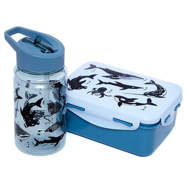 Lunchbox «sea animals» von Petit Monkey
