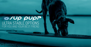SUPs for pups - Dog on a paddle board