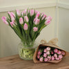 First Class Pink Tulips