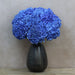 10 Blue Hydrangea Fresh Cut Flowers