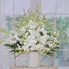Luxury White Dendrobium Orchids