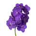 Cut Vanda Orchid Tayanee Maxi Blue( 4 Stems Box)