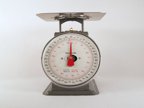 Spring Scale – Large Capacity (P-22)