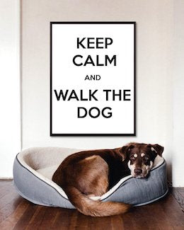 Keep Calm And Walk The Dog Art Poster
