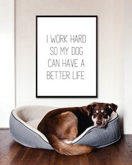 I Work Hard So My Dog Can Have A Better Life Art Poster