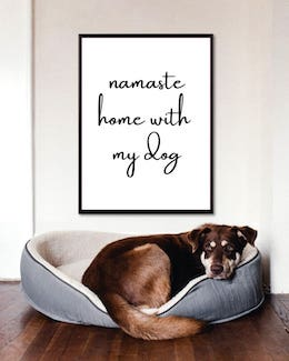 Namaste Home With My Dog Art Poster
