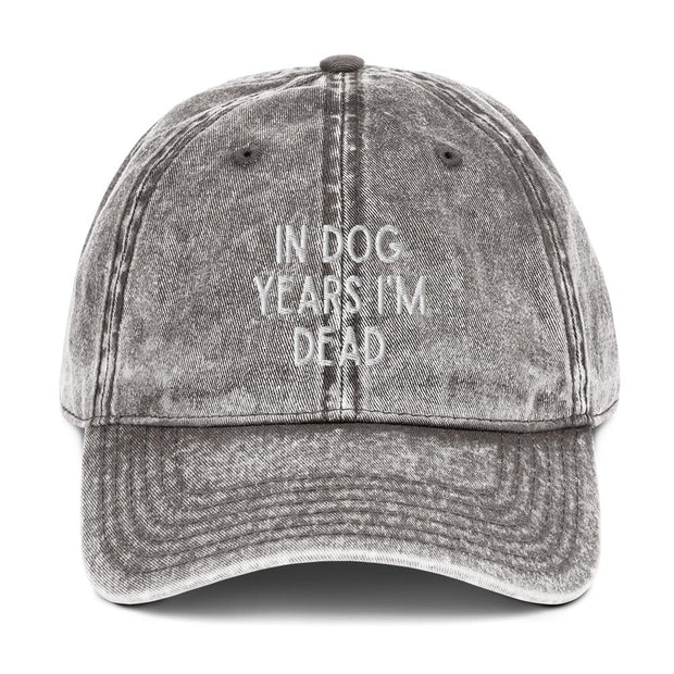 In Dog Years I'm Dead Vintage Cotton Twill Cap-Apparel-Charcoal Grey-Woofingtons