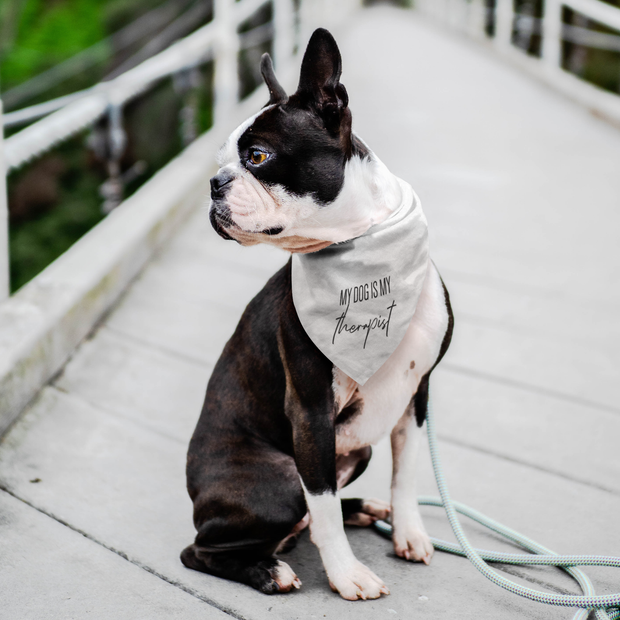My Dog Is My Therapist Dog Bandana-dog-lover-gift