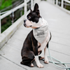 Warning: Easily Distracted By Dogs Bandana-dog-lover-gift