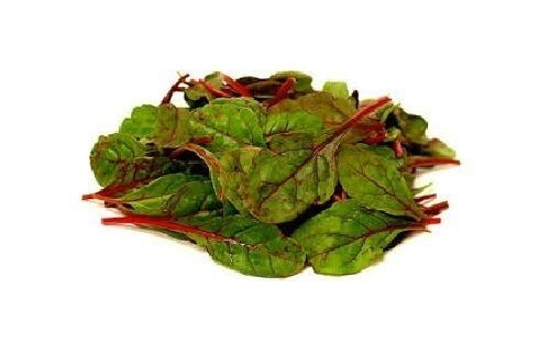 25 seeds Ruby Red Swiss Chard Heirloom silverbeet Combined Shipping Farmers Mkt