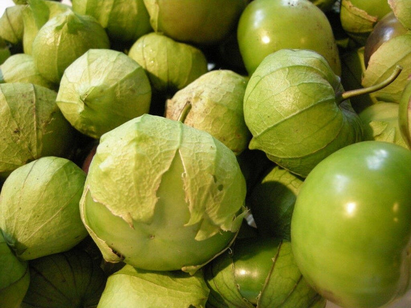 50 Seeds Tomatillo Verde Heirloom Fresh Culinary Delicious Green Husk Salsa Toma