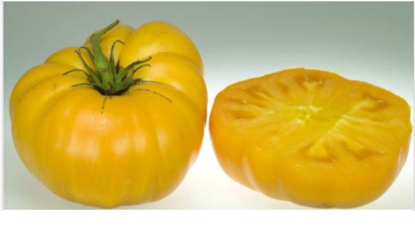 Brandywine YELLOW Tomato 30 - 5000 Seeds Rare Heirloom Beefsteak Bulk Rare oz