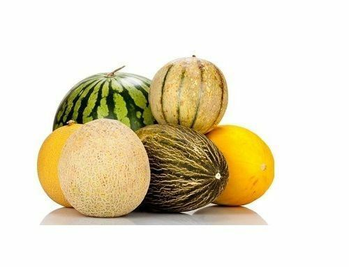 Many Varieties of Rare Melon Seeds Watermelon Musk Big Cantaloupe Garden