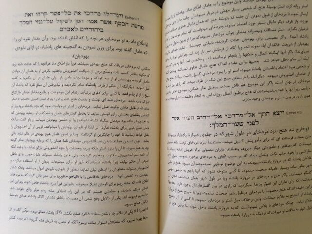 Megilat Esther commentary in Persian Meam Loez Book on Purim Jewish Holiday Rare