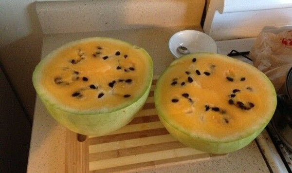 Missouri Heirloom Yellow Flesh 7 Seeds Extremely Rare Watermelon Limited Amount