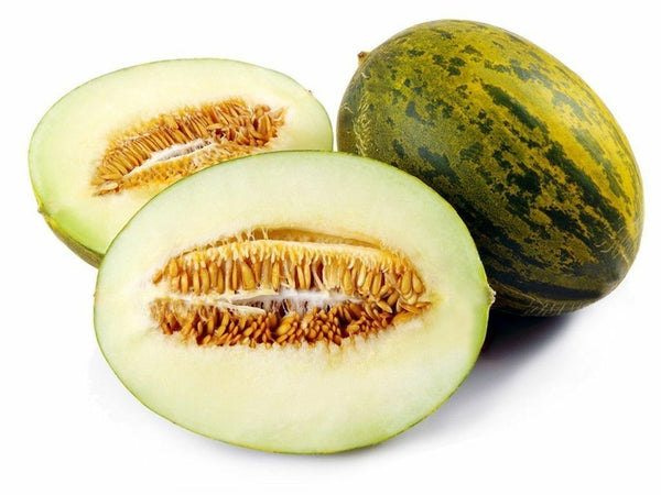 PIEL DE SAPO MELON SEED Santa claus Toadskin melon EXTREMELY SWEET RARE HEIRLOOM