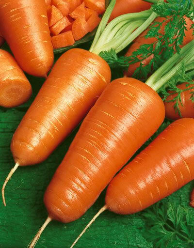 Chantenay Red core Carrot Seeds 300, 600, 1000, 2000, 5000 seed lots Gold-orange