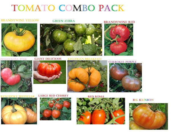 Combo Pack Tomato seeds Rare Heirloom Any mix of 3! Many Variations Giant Zebra