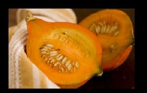 Golden Hubbard Winter Squash 10, 25, or 100 Seeds Heirloom Wholesale Bulk Fresh
