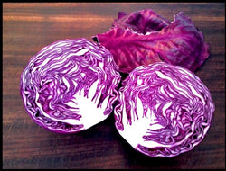 Red Acre Cabbage 300 - 8,000 seeds Heirloom purple tender healthy Leaves Early