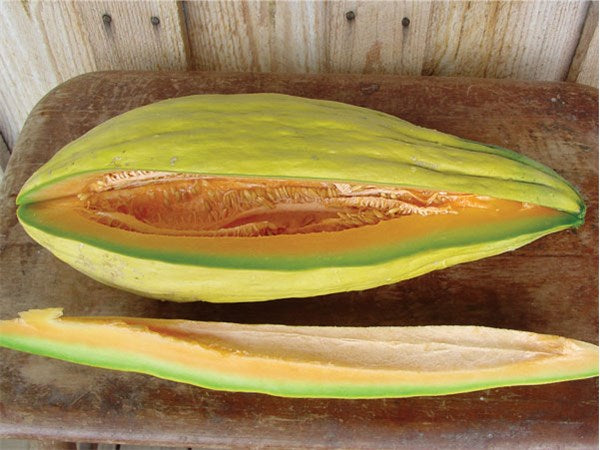 Banana melon 20 - 100 seeds rare sweet Heirloom cantaloupe musk big Heirloom 24""