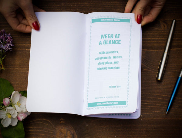 Week at a Glance Getting Things Done Free Shipping One  Standard Size Insert 64 Pages