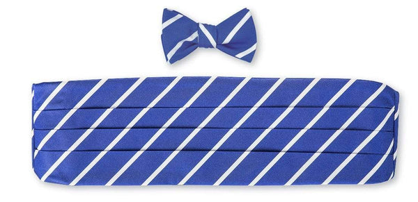 R. Hanauer Men's Necktie Blue/White Buckingham Stripes Cummerbund Set
