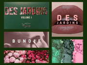 Des Jardins Collection - Lady Burgundy