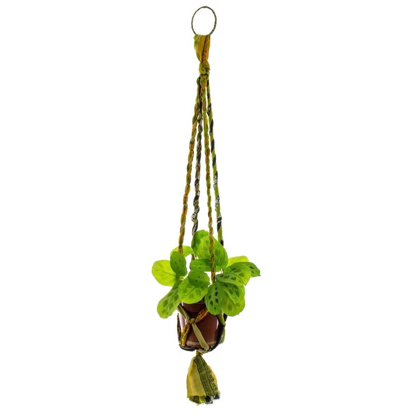 Copy of Sari Plant Hanger - Small