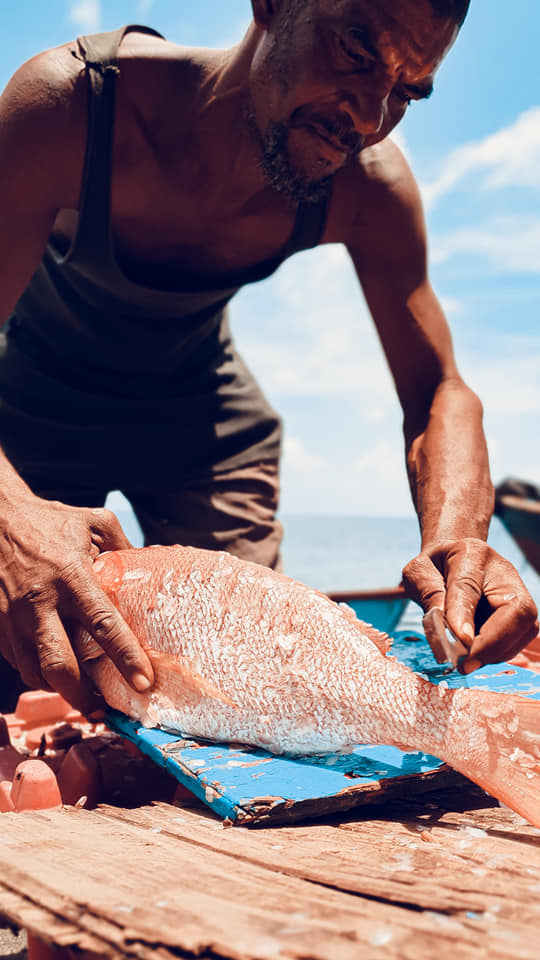 fisherman | snapper fish